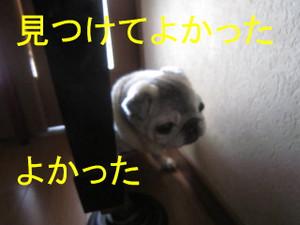 Img_5832