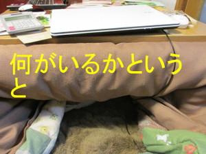 Img_6415_2