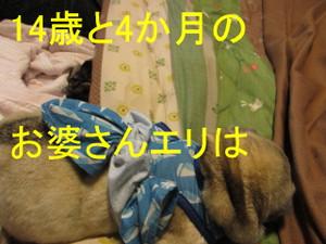 Img_7147